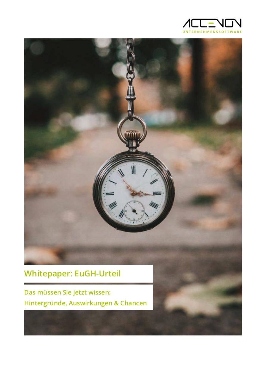 Whitepaper-Titel - EuGH-Urteil zur Zeiterfassung - Hintergründe, Auswirkungen, Chancen
